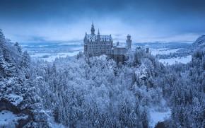 Picture Winter, Snow, Castle, Neuschwanstein Castle
