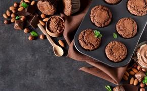 Picture nuts, cupcakes, chocolate, Evgeny Karandaev