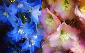 Picture flowers, painting, delphinium