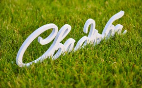 Picture grass, wedding, wooden words