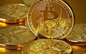 Picture coins, gold, coins, bitcoin, bitcoin, btc