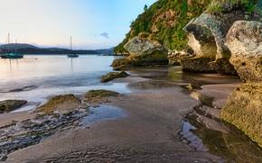 Picture sand, beach, landscape, stones, yachts, New Zealand, Bay, Waikato, Cooks Beach