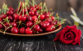 Picture rose, bowl, cherry