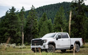 Picture forest, grass, trees, meadow, pickup, GMC, Sierra, AT4, 2020, Sierra HD