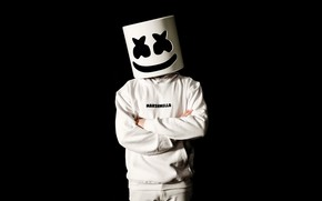 Picture people, mask, DJ, marshmallow, Marshmello