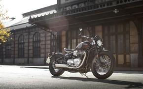 Picture Bike, Triumph, Bonneville, Motorcycle, Bobber