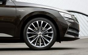 Picture wheel, sedan, Skoda, Skoda, four-door, Superb, 2020, the color is a dark unfiltered beer