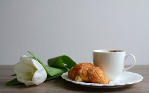 Picture white, flower, table, Tulip, coffee, Breakfast, plate, Cup, bokeh, croissant