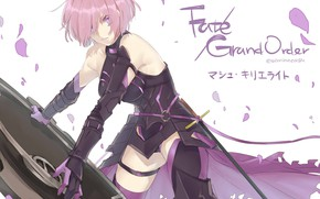 Picture girl, shield, Fate / Grand Order, The destiny of a great campaign