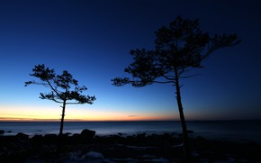 Picture sea, the sky, trees, sunset, stones, coast, horizon, silhouettes