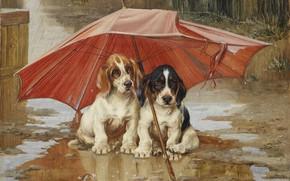 Picture 1893, British artist, British painter, oil on canvas, Wait until the clouds, William Henry Hamilton …