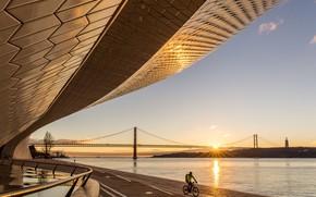 Picture bridge, construction, pond, velosipedist, SIZE