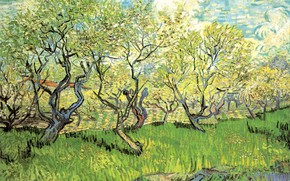 Picture grass, clouds, trees, Vincent van Gogh, in Blossom 2, Orchard