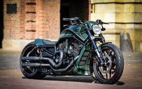 Picture Harley Davidson, Harley-Davidson, Custom, Motorbike, Thunderbike, VRSC, By Thunderbike, GREEN POISON
