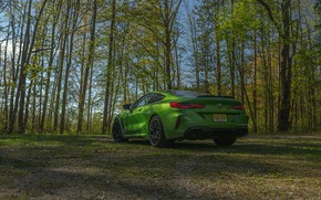 Picture trees, coupe, BMW, Coupe, 2020, BMW M8, two-door, M8, M8 Competition Coupe, M8 Coupe, F92