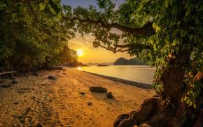 Picture sand, sea, beach, trees, landscape, sunset, shore, island, Thailand