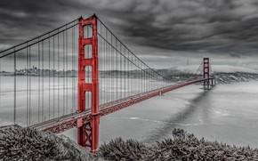Picture USA, Golden Gate Bridge, San Fransisco