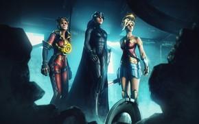 Picture Batwoman, Tracer, Wonder Woman, Fortnite