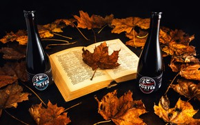Picture autumn, leaves, book, bottle, brand