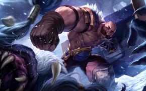 Picture man, Braum, Legends of Runeterra