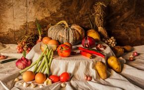 Picture harvest, pumpkin, still life, vegetables, autumn, still life, pumpkin, vegetables, harvest