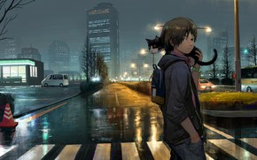 Picture road, cat, the city, after the rain, guy