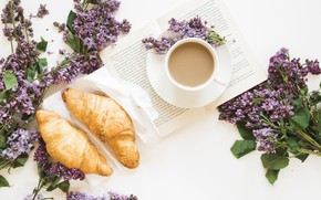 Picture coffee, book, lilac, composition