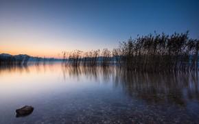 Picture lake, dawn, morning, Greece, reed, Greece, Lake Trichonida, Озеро Трихонида