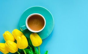 Picture background, tea, tulips, .drink