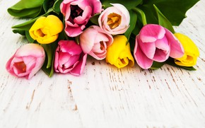 Picture bouquet, yellow, tulips, pink, Olena Rudo