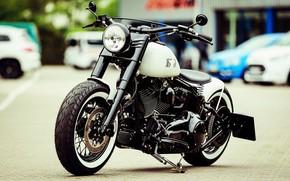 Picture Harley Davidson, Harley-Davidson, Custom, Softail, Motorbike, H-D, Thunderbike, By Thunderbike, White Star