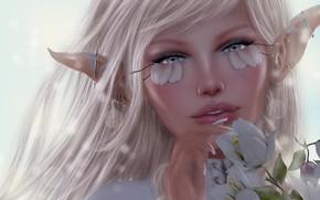 Picture girl, flowers, elf, ears