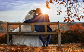 Picture autumn, the sun, bench, foliage, dress, lovers, the bride, wedding, the groom