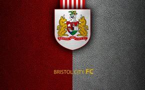 Picture wallpaper, sport, logo, football, English Premier League, Bristol City