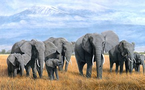 Picture field, grass, clouds, mountains, nature, figure, elephant, picture, art, Savannah, haze, painting, elephants, a lot, …