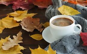 Picture Autumn, Wallpaper, Mood, Foliage, Mug