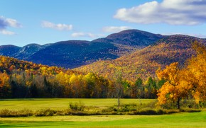 Picture field, autumn, forest, trees, mountains, hills, foliage, the colors of autumn