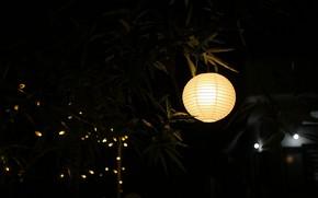 Picture Light, Lamp, Lantern