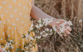 Picture girl, branch, spring, flowering