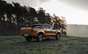 Picture forest, Ford, pickup, Ranger, Wildtrak, 2019