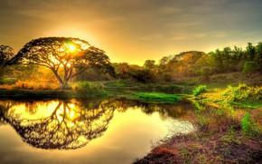 Picture light, lake, morning