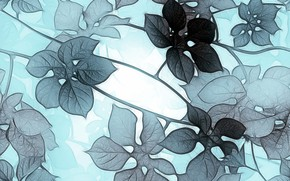 Picture leaves, grey, background, blue, texture, flower