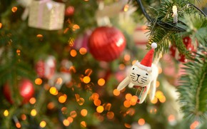 Picture cat, white, cat, decoration, red, lights, kitty, holiday, toy, toys, new year, Christmas, cat, ball, …