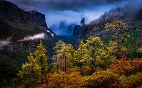 Picture trees, mountains, CA, California, Yosemite national Park, Yosemite National Park, Sierra Nevada, Sierra Nevada