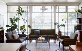 Picture style, room, interior, living room, mid-century modern