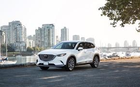 Picture photo, White, Mazda, Car, Crossover, CX-9, 2017–19