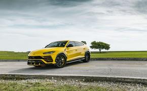 Picture Lamborghini, Clouds, Sky, Yellow, Urus, VAG