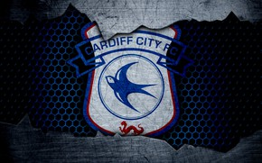 Picture wallpaper, sport, logo, football, Cardiff City