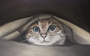 Picture cat, cat, fabric