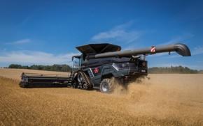 Picture Wheel, 2018, Massey Ferguson, Harvester, Massey Ferguson Ideal 9T